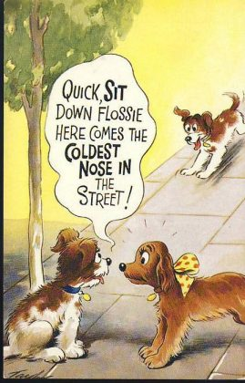 BAMFORTH No.2264 DOGS humour FLOSSIE Vintage Comic Postcard refB1Vintage Postcard. An original postcard in very good condition for its age. Please see large photos and description for details. refB2