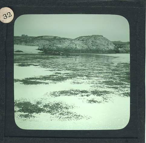 11959.JPG