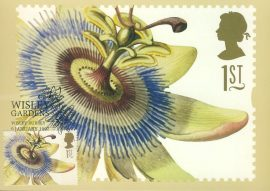 GRANADILLA Painting by GD Ehret Postcard WISLEY GARDENS special hand stamp postmark 1997 refE205 Special Hand Stamped Royal Mail Postcard in Very Good Condition - address label on reverse.