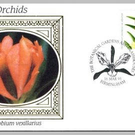 1993 BS24 ORCHIDS Dendrobium vexillarius Ltd Edition small silk cover refF7 Cover in very good condition. Please see larger photo for details.