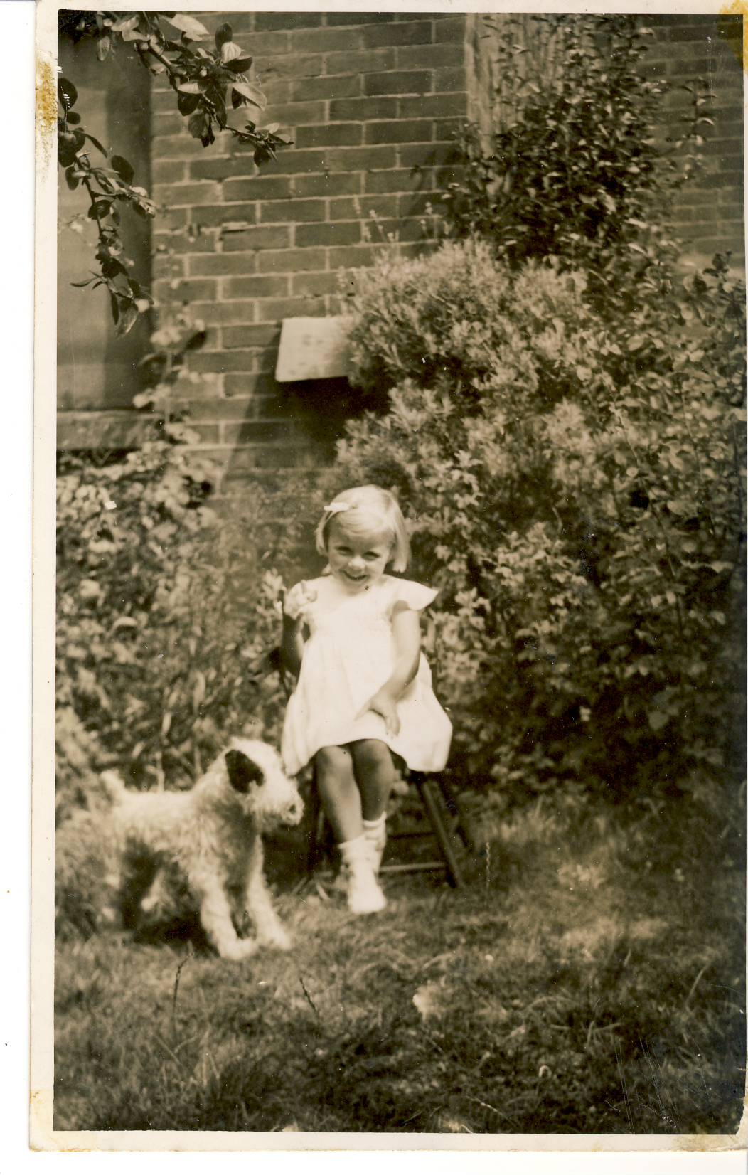 Pauline age 3 with stuffed toy dog vintage photo postcard Young girl child named on back of photo postcard as Pauline. refP7 Pre-owned in good condition. Unposted.