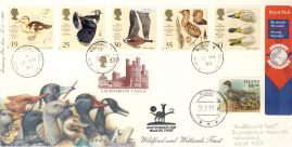 Wideopen & Fludir Iceland 1996 Wildfowl & Wetlands Trust Stamps Limited Edition cover double postmarks Newcastle upon Tyne. This is a limited edition stamp cover numbered 42 of 70 . Royal Mail SWIFTAIR Par Avion by Airmail Very good condition.