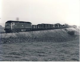 Settle to Carlisle 47074 with freight 1981 Train Photo refSC122 Measure approx 6.5 x 8.5 inches / 16cm x 21cm - an original 'W.A.Sharman' black and white photographic print pre-owned item in very good condition. Details on reverse.