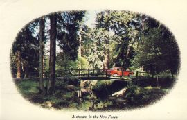 New Forest bridge stream and vintage red car Old Postcard refP9 Pre-owned used condition with name address and message on reverse. No stamp.